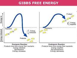 Gibbs Free Energy Entropy Enthalpy Chart Tang 01b Enthalpy Entropy And Gibbs Free Energy