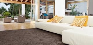 Living Room Carpet Cost