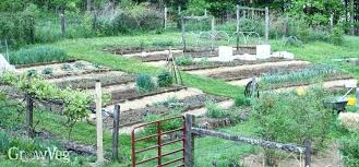 how to make terrace vegetable garden create a on slope