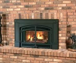 regency fireplace review wood burning insert reviews medium size of dainty fireplace insert review napoleon wood