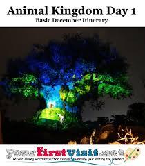 Animal Kingdom Rivers Of Light Dining Package Animal Kingdom Day 1 Disney World 2019 Basic December