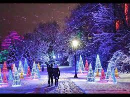 Winter Festival Of Lights Toronto Making Tree Cones With Lights Niagara Falls Winter Winter