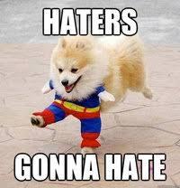10 Cute Pomeranian Memes | Dogs and Puppies via Relatably.com