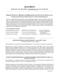 Public Relation Director Resume It Manager Resume Samples And Writing Guide 10 Examples