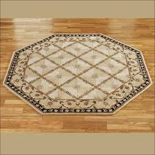 floor octagon rugs that is soft enterprizecanada org