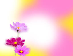 Flower Powerpoint Lovely Flowers Ppt Background_best Powerpoint Templates And