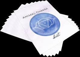 Animal Chakra Chart Chakra Healing Clearing Attunement Lynn Mckenzie