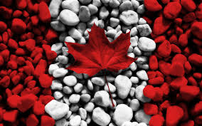 flag of canada pc backgrounds hd, 397 kB - Priscilla Mason | Canada  photography, Canada day, Canada day party