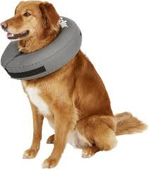 Zenpet Zencollar Inflatable Recovery Dog Cat Collar X Small