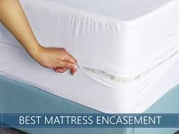 mattress protector bed bugs. Plain Protector Top Rated Mattress Encasement Reviews Inside Mattress Protector Bed Bugs