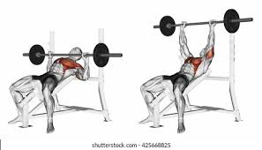Bench Press HD Stock Images | Shutterstock