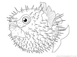 Clown Fish Coloring Pages Printable For Adults Tropical Angel