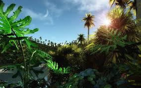 jungle wallpaper desktop.  Wallpaper Tropic Jungle Wallpaper In Jungle Wallpaper Desktop