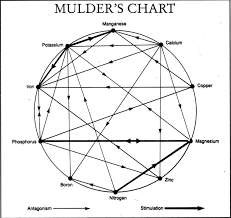Mulders Chart Michael Sentinellas Ossie_bloke Pictures Photos Images