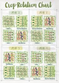 Crop Rotation Chart Annabel Langbein Blog