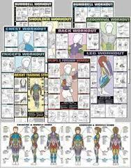 Image Result For Iron Gym Pull Up Bar Workout Chart