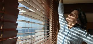 Sichtschutz Für Fenster Tipps Zu Folie Plissee Rollo Und Co