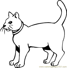 Small Picture Cat Colouring Pages Free Coloring Pages