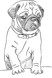 Small Picture Pug Dog Skecth Coloring Page Color Luna