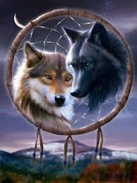 Dream Catchers With Wolves Wolves and dream catcher Dreamcatcher Art Pinterest Dream 1