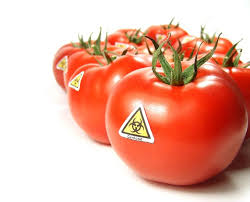 best good food gone bad images food safety more than 60 countries have passed gmo labeling laws yet the usa is still pushing genetically modified food on americans who do not want to eat it