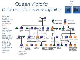 Queen Victoria And Hemophilia Family Tree Hemophilia T