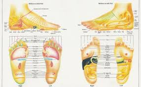 Reflexology Practitioners Believe That A Properly Executed