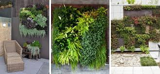 Vertical Garden Design Ideas Inspiration The Small Garden BLOG PAGES