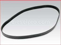 fan belt. cummins multi-groove fan belt