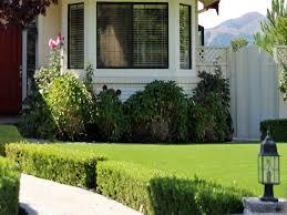 faux grass meridian california garden