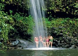 Image result for hawaii hiking experience