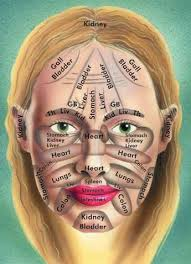 Chinese Face Map And Body Health Eruptingmind