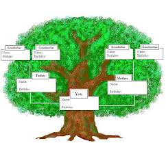how do family trees work the 25 best family tree diagram ideas on pinterest greek family
