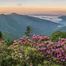 25 wnc luxuries locals especially can confirm western north carolina holds a wealth of riches from natural wonders and cultural treres to