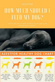 Weight Control How Much Should I Feed My Dog Dogs Ideal