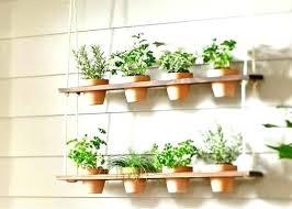 windowsill herb garden kit home herb garden kit in home herb garden windowsill herb garden kit