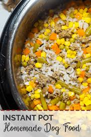 Raw dog food recipes can provide helpful ideas for adding balanced nutrition and variety to a raw diet. How To Make Easy Homemade Dog Food In An Instant Pot Southern Bytes