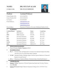 resume format for marriage proposal 25 unique resume format free download ideas on pinterest resume