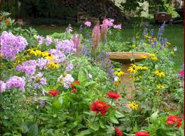 Small Picture Flower Garden Ideas Beginners Design Flower Garden Ideas Beginners