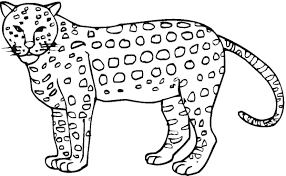 Small Picture Cheetah Coloring Page GetColoringPagescom