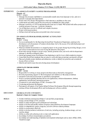 Sample Programmer Resume Associate Programmer Resume Samples Velvet Jobs 44