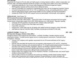 Safety Manager Resume Haadyaooverbayresort Com