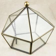 geometric glass terrarium