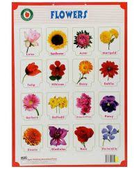 Marathi Flowers Name Chart Marathi Language