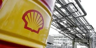 Image result for shell nigeria exploration and production company