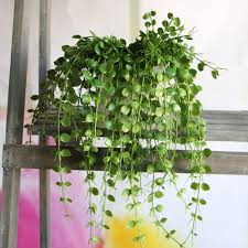 decorative plants for office. Aliexpress.com : Buy Artificial Vine Leaves Flower Home Decor Party Wedding Decoration Mariage Fake Decorative Plants For Office