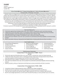 project scheduler resumes master resume sample business system analyst scrum master resume