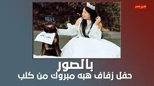 هبة مبروك تثير الجدل وتتزوج كلب