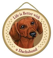 "Dog Advice DACHSHUND Sign Wood 10""<b>x5</b>"" <b>Wall Hanging</b> Great ..."