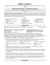 Business Analyst Resume Sample Monster Intended For Resume